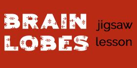 Jigsaw lesson
